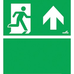 Eaton Blessing Skopos Skopos Led ISO pictogram noodverlichting 174 001 053